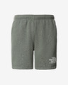 The North Face Coordinates Shorts